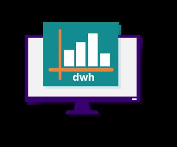 dwh-analyst